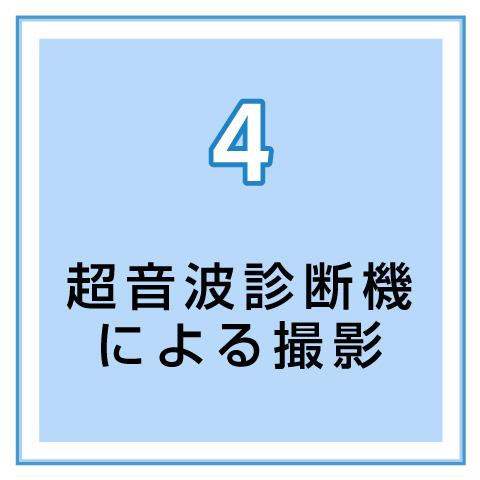4.超音波診断機による撮影